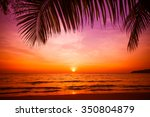 sunset and beach.  beautiful... | Shutterstock . vector #350804879