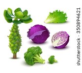 vector vegetables set with red...   Shutterstock .eps vector #350894621