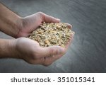 close up of farmer's hand...   Shutterstock . vector #351015341