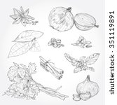 vector set of hand drawn spices ... | Shutterstock .eps vector #351119891
