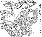 zentangle stylized tropical... | Shutterstock .eps vector #351211937