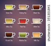 tea types infographics. vector... | Shutterstock .eps vector #351301841