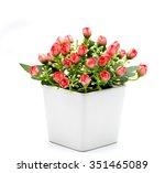 trees  flowers in pots on white ...   Shutterstock . vector #351465089