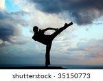 Kung Fu At The Edge. Element O...