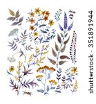 hand drawn vintage floral... | Shutterstock . vector #351891944