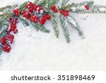 branches of  christmas tree... | Shutterstock . vector #351898469