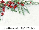 branches of  christmas tree... | Shutterstock . vector #351898475