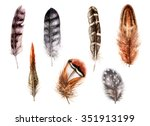 hand drawn set of various... | Shutterstock . vector #351913199
