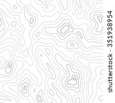 topographic map seamless pattern | Shutterstock . vector #351938954