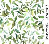 vector illustration of floral... | Shutterstock .eps vector #352007015