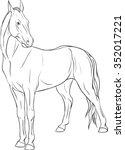 horse stands | Shutterstock .eps vector #352017221
