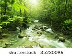 Tropical Mountain Stream With...