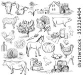 farm collection   hand drawn... | Shutterstock . vector #352326404