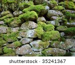 Stone Wall Covered By Moss...