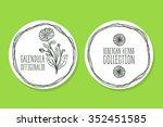 calendula officinalis  ...   Shutterstock .eps vector #352451585
