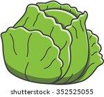 cabbage doodle illustration | Shutterstock .eps vector #352525055