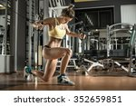 young fitness woman execute... | Shutterstock . vector #352659851