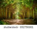 walkway lane path with green...   Shutterstock . vector #352750301