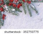 viburnum with christmas  tree... | Shutterstock . vector #352753775