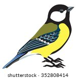great titmouse side view... | Shutterstock .eps vector #352808414