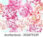vector drawing peony and... | Shutterstock .eps vector #352879139