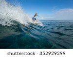 muscular surfer with long white ... | Shutterstock . vector #352929299
