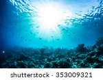 An Ocean Underwater Reef With...