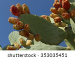 Juicy Prickly Pears
