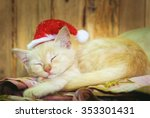 Stock photo kitten sleeps with santa claus red hat selective soft focus vintage 353301431