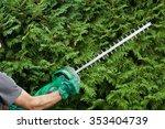 cutting a hedge | Shutterstock . vector #353404739