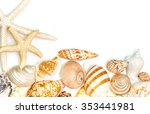 Variety Of Sea Shells  On A...