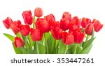 Bunch Of Fresh Red Tulip...