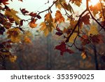 Orange Colored Dry Leaves In...