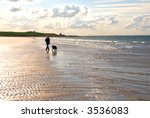Woman And Dog Walking On...