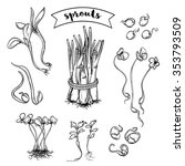 Sprouts Plants Set. Isolated...