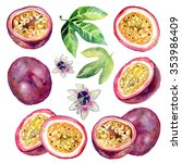 passion fruit watercolor... | Shutterstock . vector #353986409