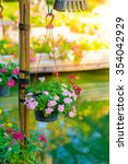 Small photo of beautiful pink vinca flowers(madagascar periwinkle) in Hanging flower pot