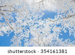 Winter Landscape White Snow Of...