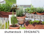 planting herbs and vegetables... | Shutterstock . vector #354264671