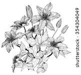 sketch of clematis flowers ... | Shutterstock . vector #354304049
