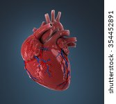 3d rendered human heart. | Shutterstock . vector #354452891