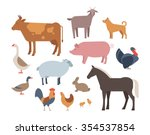 farm animals and pets vector... | Shutterstock .eps vector #354537854
