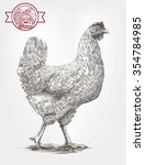 brood hen. sketches made by... | Shutterstock .eps vector #354784985