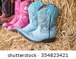 Old Cowboy Boots In Farm