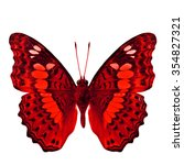 Small photo of Common Commander (Moduza procris milonia) in fancy color profile isolated on white background, beautiful red butterfly