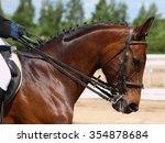 dressage horse portrait in... | Shutterstock . vector #354878684