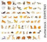 Mammals Of The World. Animals...