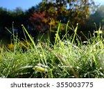 drops on leaf  | Shutterstock . vector #355003775