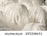 White Ostrich Feather...