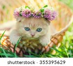 Stock photo portrait of cute dreaming little kitten crowned with a chaplet of clover 355395629
